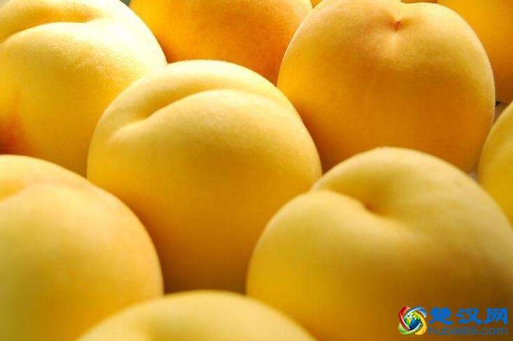三湖黄桃口感 三湖黄桃品种特点及历史