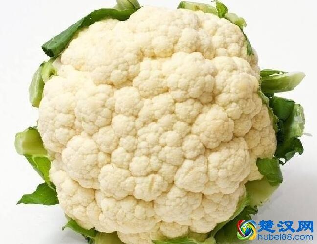 云梦百合花菜介绍 百合花菜的口感及特点