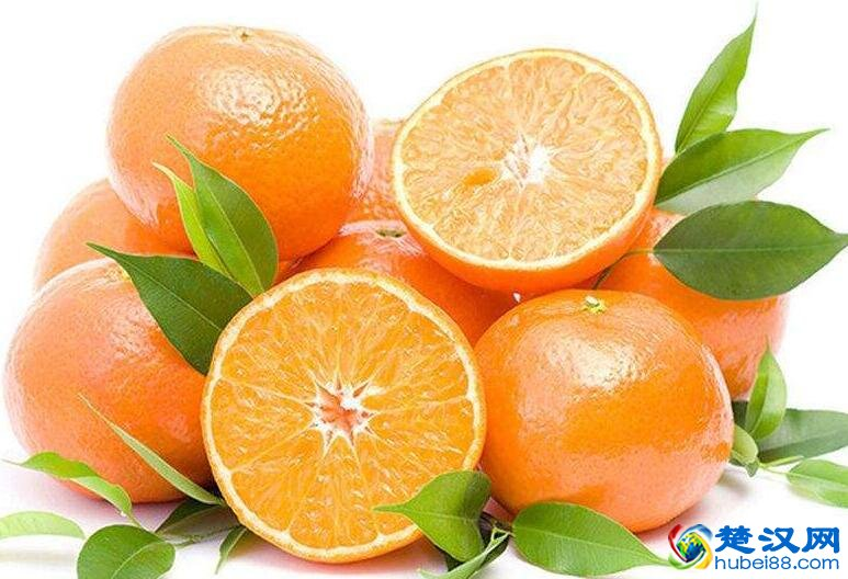 松滋柑桔介绍 松滋柑桔的特点及口感