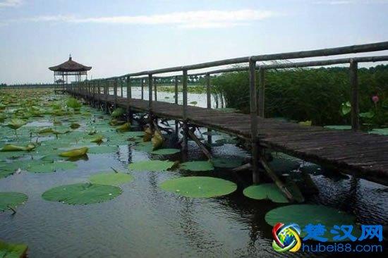 洪湖蓝田生态旅游风景区介绍 洪湖蓝田生态旅游攻略及门票