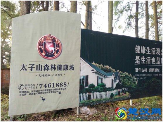 荆门太子山国家森林公园介绍以及游玩攻略