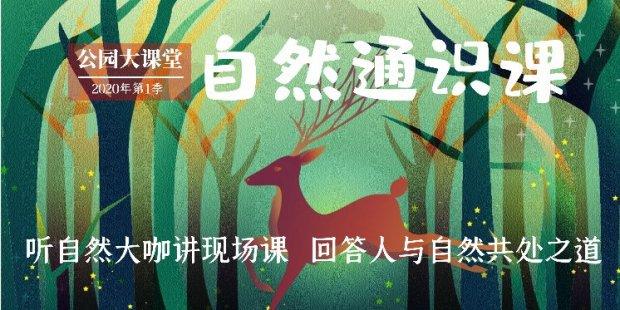 2020年公园大课堂自然通识课第一季直播(附回放入口